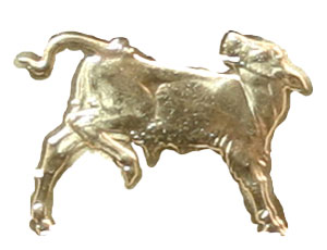 Coin Challenge Calf