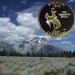 Wyoming State Quarter