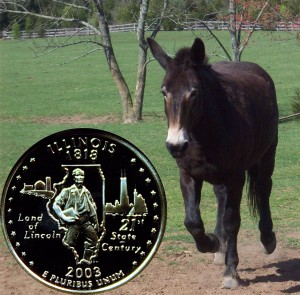 Illinois State Quarter Coin