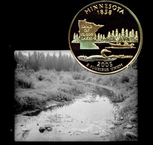 Minnesota State Quarter Coin