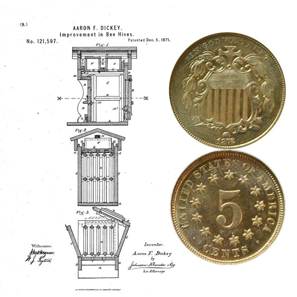 Shield Nickel Coin