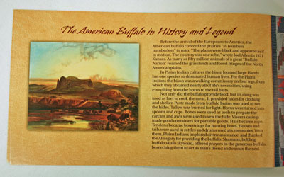 American Buffalo Coin and Currency Set Booklet page 3