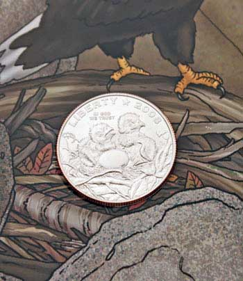 2008 Bald Eagle Young Collectors coin sets clad half dollar obverse