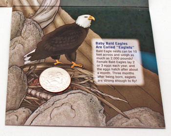 2008 Bald Eagle Young Collectors coin sets package contents inside bottom
