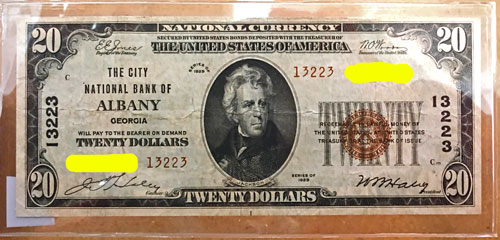 National Currency Note City National Bank of Albany $20 Brown Seal 1929 Series